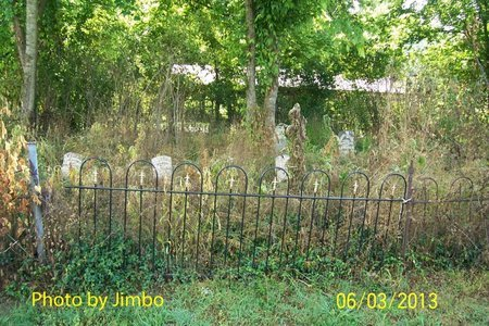 *WAGGONER OVERVIEW,  - Lincoln County, Tennessee |  *WAGGONER OVERVIEW - Tennessee Gravestone Photos