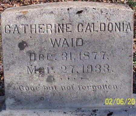 CRANE WAID, CATHERINE CALDONIA - Lincoln County, Tennessee | CATHERINE CALDONIA CRANE WAID - Tennessee Gravestone Photos