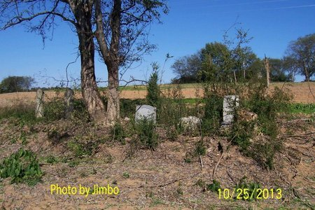 *WALKER OVERVIEW,  - Lincoln County, Tennessee |  *WALKER OVERVIEW - Tennessee Gravestone Photos