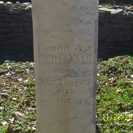 HIGGINS WHITAKER, ANN J. - Lincoln County, Tennessee | ANN J. HIGGINS WHITAKER - Tennessee Gravestone Photos