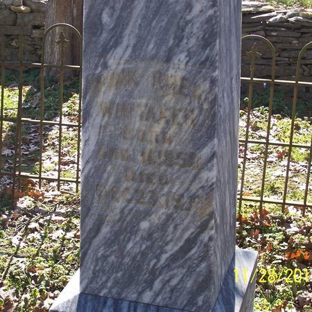 WHITAKER, PINK - Lincoln County, Tennessee | PINK WHITAKER - Tennessee Gravestone Photos