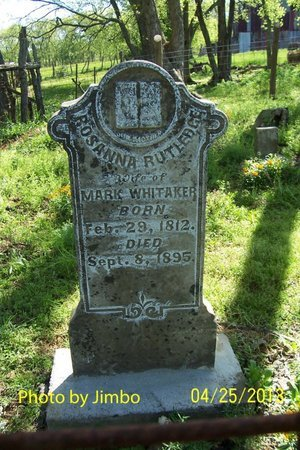 WHITAKER, ROSANNA - Lincoln County, Tennessee | ROSANNA WHITAKER - Tennessee Gravestone Photos