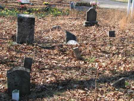 *FAGAN OVERVIEW 2,  - Marshall County, Tennessee |  *FAGAN OVERVIEW 2 - Tennessee Gravestone Photos