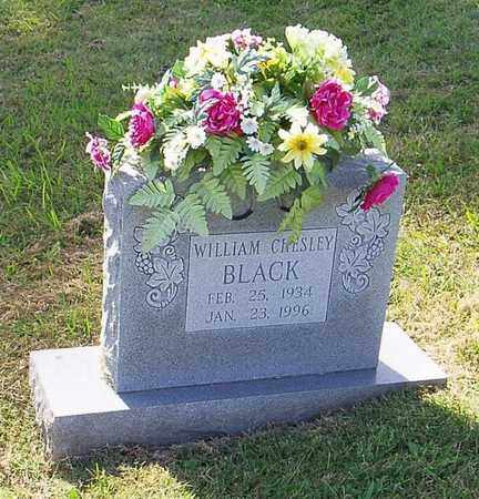BLACK, WILLIAM CHESLEY - Maury County, Tennessee | WILLIAM CHESLEY BLACK - Tennessee Gravestone Photos