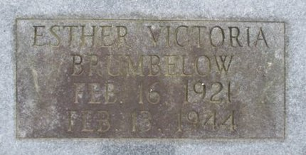 BRUMBELOW, ESTHER VICTORIA - McNairy County, Tennessee | ESTHER VICTORIA BRUMBELOW - Tennessee Gravestone Photos