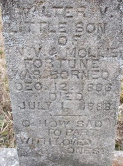 FORTUNE, WALTER V. - McNairy County, Tennessee | WALTER V. FORTUNE - Tennessee Gravestone Photos
