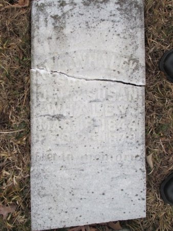 WHALEY, NEWTON ALEXANDER - McNairy County, Tennessee | NEWTON ALEXANDER WHALEY - Tennessee Gravestone Photos