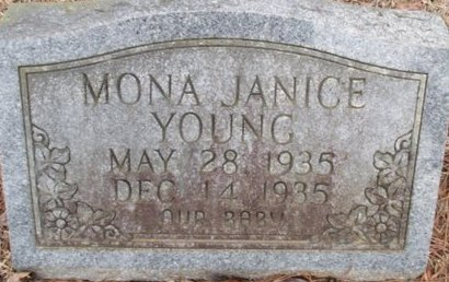 YOUNG, MONA JANICE - McNairy County, Tennessee | MONA JANICE YOUNG - Tennessee Gravestone Photos