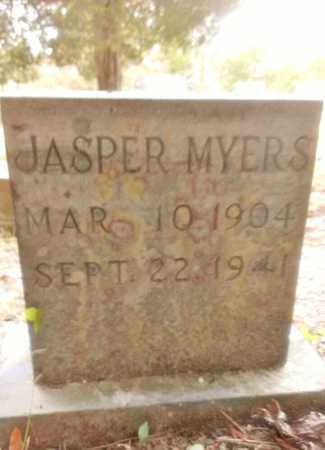 MYERS, JASPER - Meigs County, Tennessee | JASPER MYERS - Tennessee Gravestone Photos