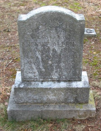 ALLEN, MINNIE - Putnam County, Tennessee | MINNIE ALLEN - Tennessee Gravestone Photos