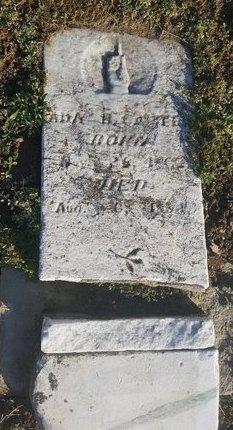 CARTER, ANN B. - Robertson County, Tennessee | ANN B. CARTER - Tennessee Gravestone Photos