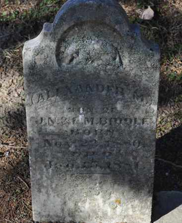 BIDDLE, ALEXANDER M. - Shelby County, Tennessee | ALEXANDER M. BIDDLE - Tennessee Gravestone Photos
