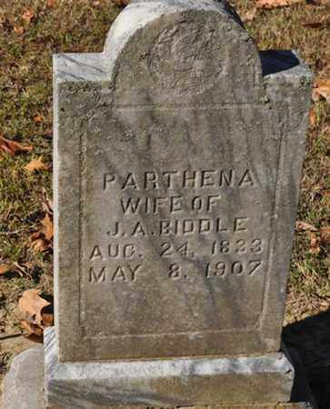 BIDDLE, PARTHENA - Shelby County, Tennessee | PARTHENA BIDDLE - Tennessee Gravestone Photos