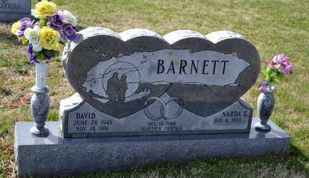 BARNETT, DAVID - Sullivan County, Tennessee | DAVID BARNETT - Tennessee Gravestone Photos