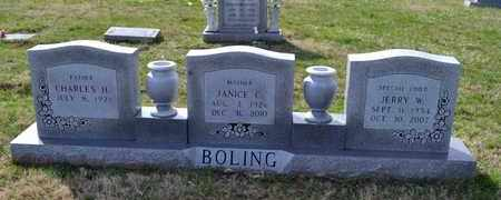 HICKS BOLING, JANICE C - Sullivan County, Tennessee | JANICE C HICKS BOLING - Tennessee Gravestone Photos