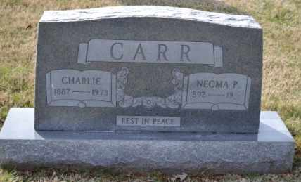 CARR, CHARLIE - Sullivan County, Tennessee | CHARLIE CARR - Tennessee Gravestone Photos