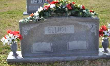 ELLIOTT, TODD EDGAR - Sullivan County, Tennessee | TODD EDGAR ELLIOTT - Tennessee Gravestone Photos