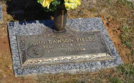 FIELDS, JOHN DAWSON - Sullivan County, Tennessee | JOHN DAWSON FIELDS - Tennessee Gravestone Photos