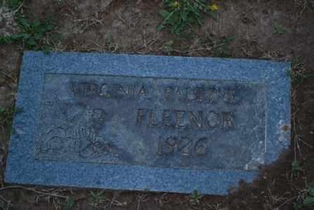 FLEENOR, VIRGINIA PAULINE - Sullivan County, Tennessee   VIRGINIA PAULINE FLEENOR - Tennessee Gravestone Photos
