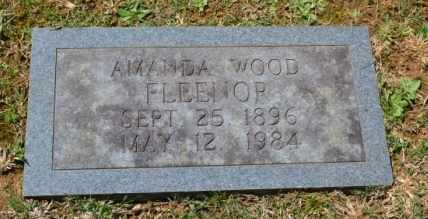 FLEENOR, AMANDA - Sullivan County, Tennessee | AMANDA FLEENOR - Tennessee Gravestone Photos