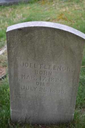 FLEENOR, JOEL - Sullivan County, Tennessee | JOEL FLEENOR - Tennessee Gravestone Photos