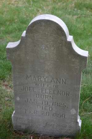 FLEENOR, MARY ANN - Sullivan County, Tennessee | MARY ANN FLEENOR - Tennessee Gravestone Photos