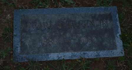 FLEENOR, PEARL F - Sullivan County, Tennessee | PEARL F FLEENOR - Tennessee Gravestone Photos