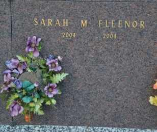 FLEENOR, SARAH M - Sullivan County, Tennessee | SARAH M FLEENOR - Tennessee Gravestone Photos