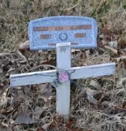 HATCHER, JAMIE LEE - Sullivan County, Tennessee | JAMIE LEE HATCHER - Tennessee Gravestone Photos