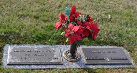 JONES, ANNA B - Sullivan County, Tennessee | ANNA B JONES - Tennessee Gravestone Photos