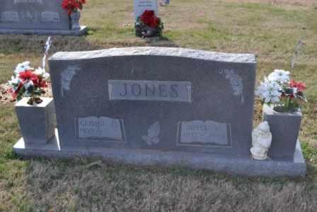 JONES, JOYCE H - Sullivan County, Tennessee | JOYCE H JONES - Tennessee Gravestone Photos