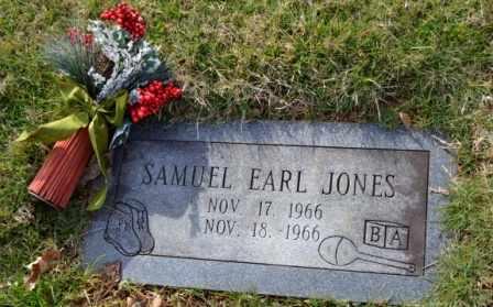 JONES, SAMUEL EARL - Sullivan County, Tennessee | SAMUEL EARL JONES - Tennessee Gravestone Photos