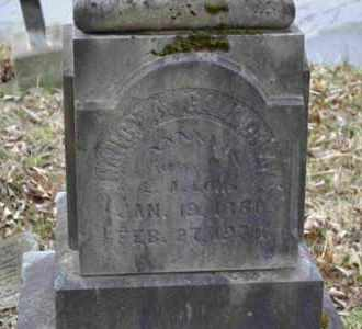 LONG, NANCY - Sullivan County, Tennessee | NANCY LONG - Tennessee Gravestone Photos