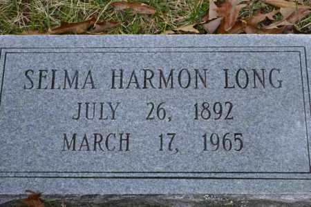 LONG, SELMA - Sullivan County, Tennessee | SELMA LONG - Tennessee Gravestone Photos