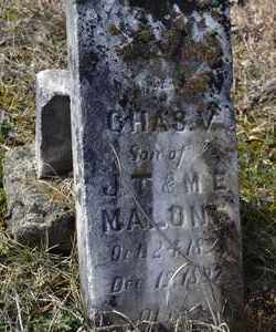 MALONE, CHASE V - Sullivan County, Tennessee   CHASE V MALONE - Tennessee Gravestone Photos
