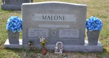 MALONE, JAMES E - Sullivan County, Tennessee | JAMES E MALONE - Tennessee Gravestone Photos