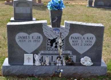 MALONE, PAMELA KAY - Sullivan County, Tennessee | PAMELA KAY MALONE - Tennessee Gravestone Photos