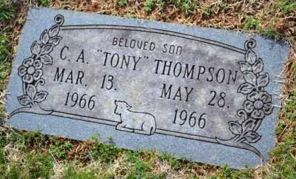 THOMPSON, C.A. - Sullivan County, Tennessee | C.A. THOMPSON - Tennessee Gravestone Photos