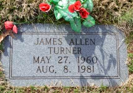 TURNER, JAMES ALLEN - Sullivan County, Tennessee | JAMES ALLEN TURNER - Tennessee Gravestone Photos