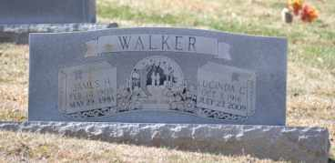 WALKER, LUCINDA C - Sullivan County, Tennessee | LUCINDA C WALKER - Tennessee Gravestone Photos
