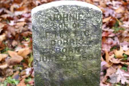 DORRIS, JOHNIE - Sumner County, Tennessee | JOHNIE DORRIS - Tennessee Gravestone Photos
