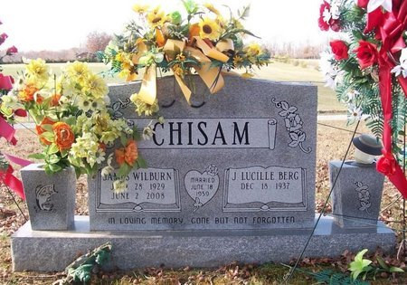 CHISAM, JAMES WILBURN - Warren County, Tennessee | JAMES WILBURN CHISAM - Tennessee Gravestone Photos