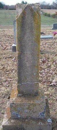 CHISAM, MARTHA JANE - Warren County, Tennessee | MARTHA JANE CHISAM - Tennessee Gravestone Photos