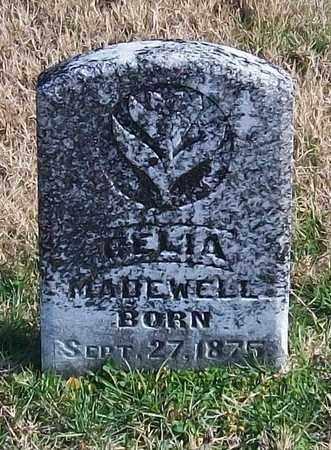 MADEWELL, DELIA - Warren County, Tennessee | DELIA MADEWELL - Tennessee Gravestone Photos