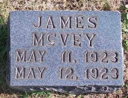 MCVEY, JAMES - Warren County, Tennessee   JAMES MCVEY - Tennessee Gravestone Photos