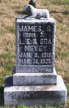 MCVEY, JAMES G. - Warren County, Tennessee | JAMES G. MCVEY - Tennessee Gravestone Photos