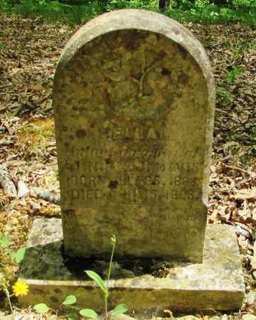 DAVIS, ELLA - Wayne County, Tennessee | ELLA DAVIS - Tennessee Gravestone Photos