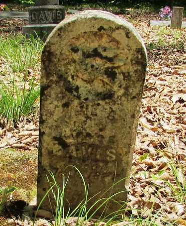 DAVIS, JAMES - Wayne County, Tennessee | JAMES DAVIS - Tennessee Gravestone Photos