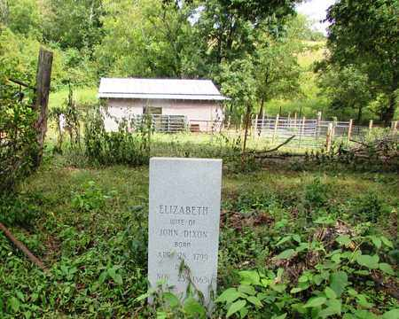 DIXON, ELIZABETH - Wayne County, Tennessee | ELIZABETH DIXON - Tennessee Gravestone Photos
