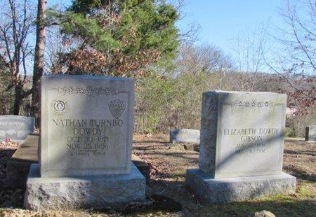DOWDY GIBSON, ELIZABETH - Wayne County, Tennessee   ELIZABETH DOWDY GIBSON - Tennessee Gravestone Photos